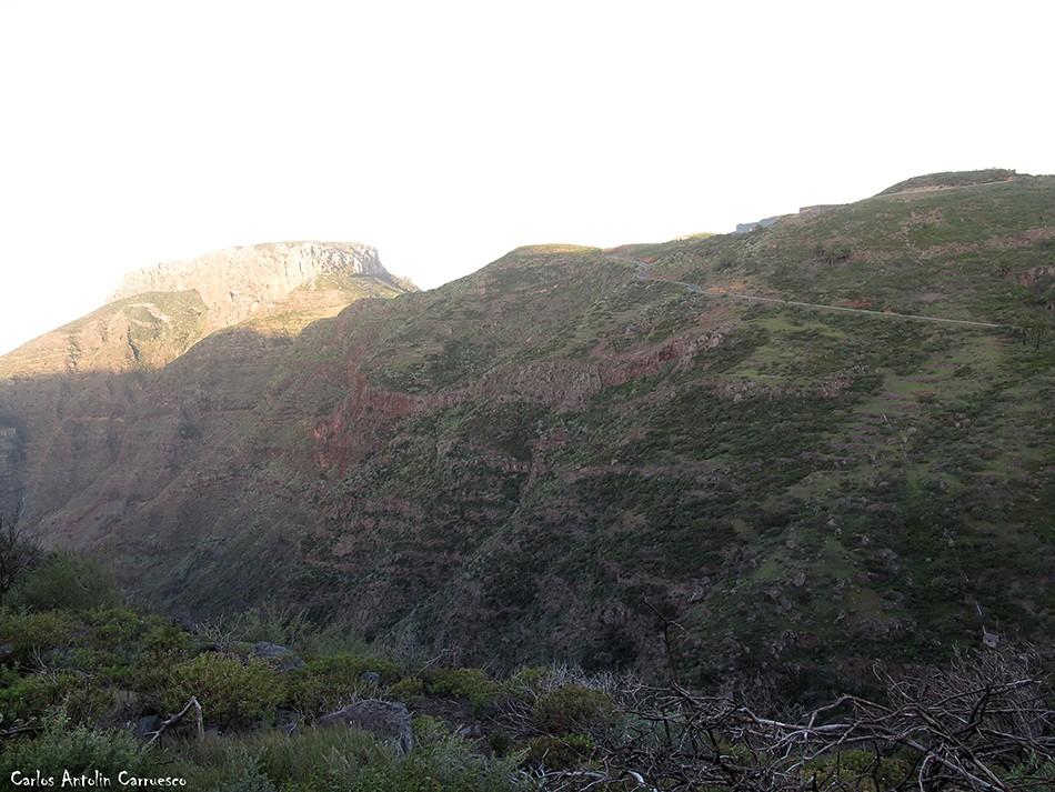 Pavón - GR131 - La Gomera - La Fortaleza - Chipude