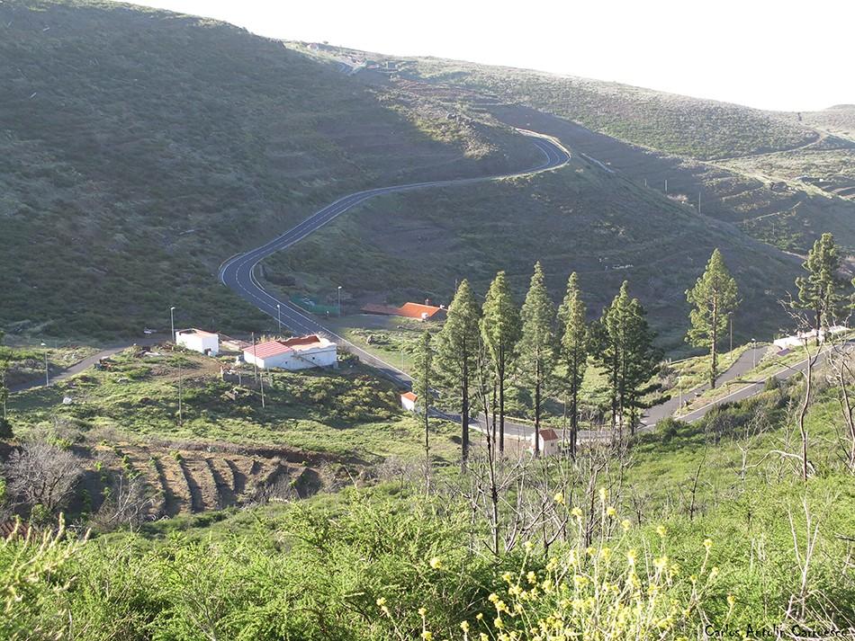 Igualero - Parque Nacional de Garajonay - La Gomera