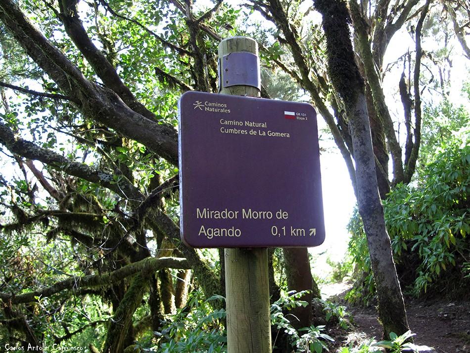 Mirador Morro de Agando - Agando - La Gomera