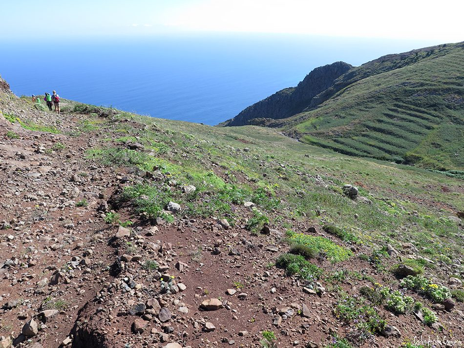 Teno Alto - Ajoque - Tenerife