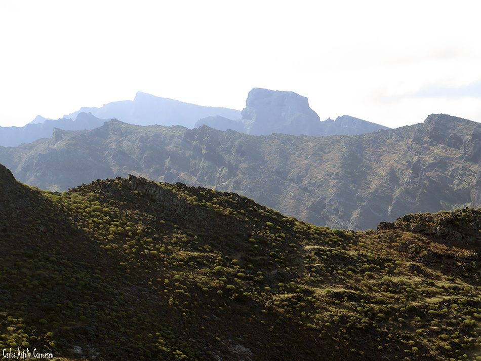 Los Garañones - Los Gigantes - Tenerife