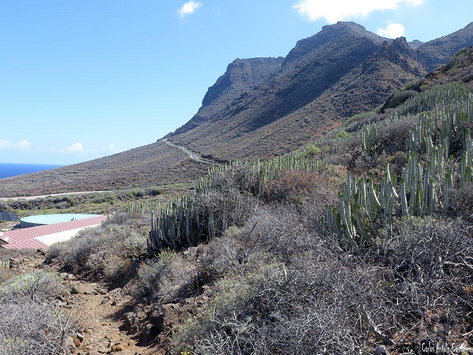 Teno Alto - Tenerife