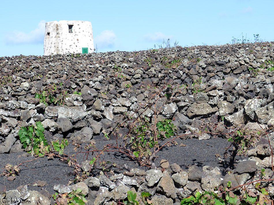 Volcán de La Corona - Ye - Lanzarote