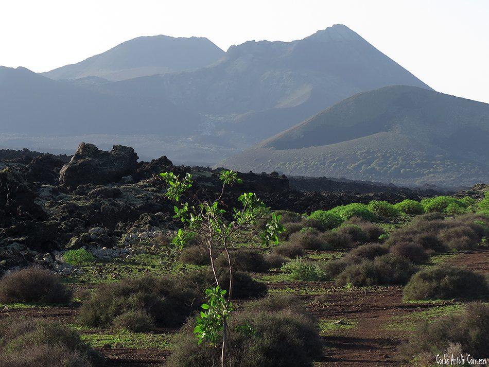 La Caldereta - Caldera de Montaña Blanca - Lanzarote