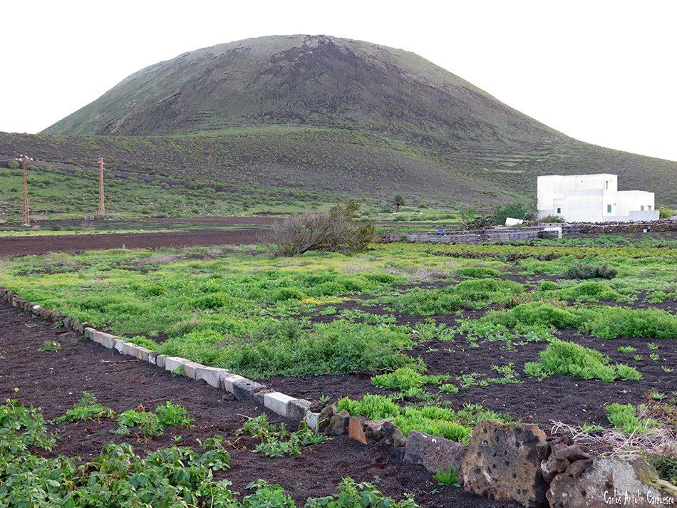 Guinate - La Corona - Lanzarote