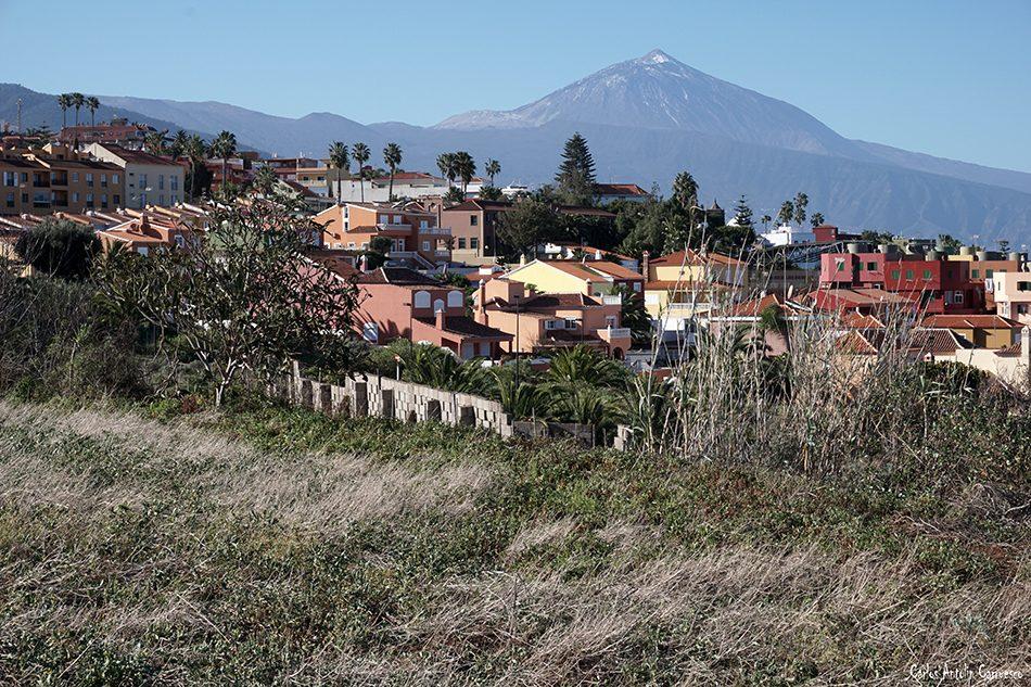 El Calvario - Tacoronte - Tenerife - teide