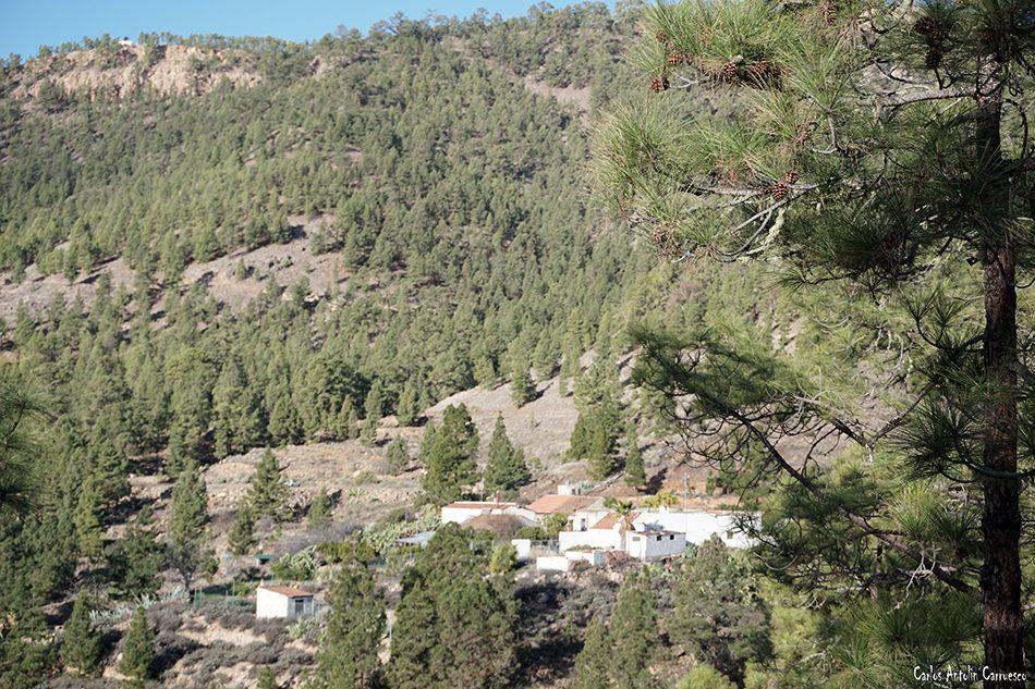 Cumbres de Arico - Tenerife - el contador