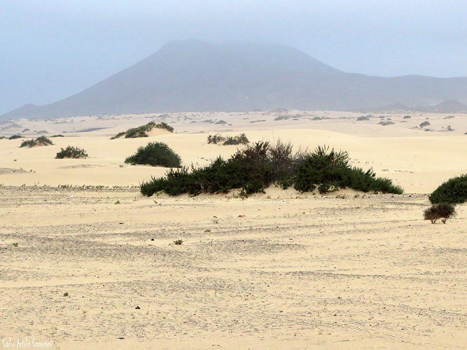 Dunas de Corralejo - Fuerteventura