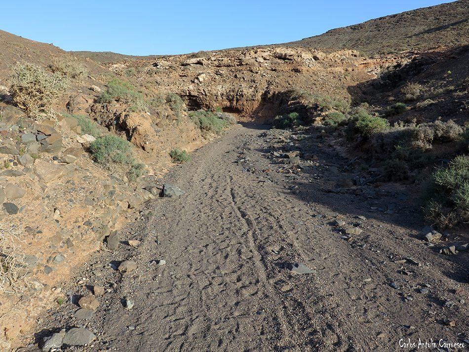 Pecenescal - Fuerteventura