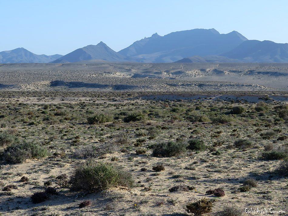Costa Calma - Jandía - Fuerteventura