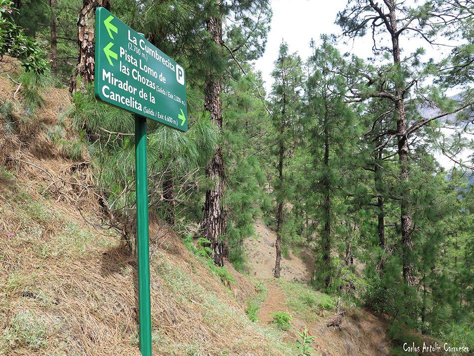 La Cancelita - Caldera de Taburiente - La Palma