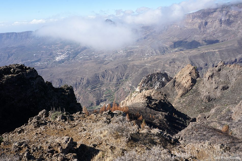 Mesa de Las Vacas - Gran Canaria