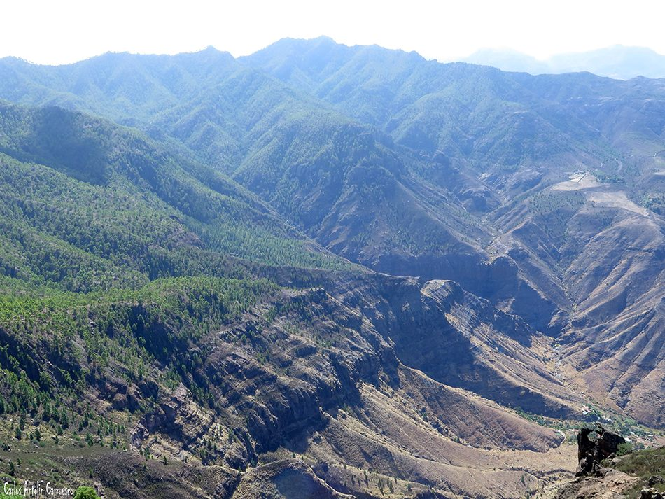 El Risco - Faneque - Gran Canaria - tamadaba