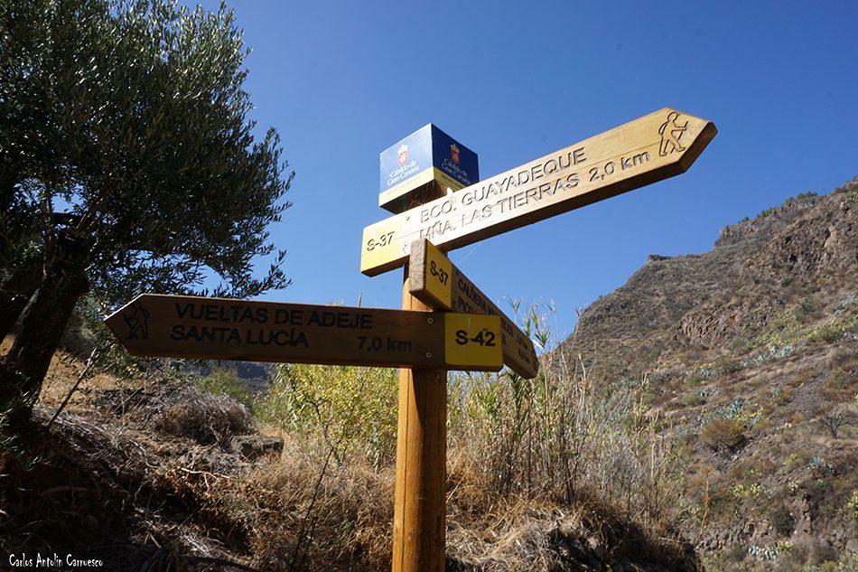 Cruce del Olivo - Guayadeque - Gran Canaria - Lereta