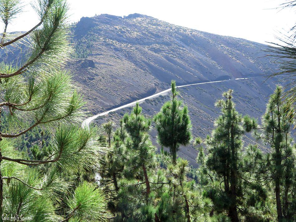 Montaña de La Crucita - Valle de Güimar - Tenerife - tf24