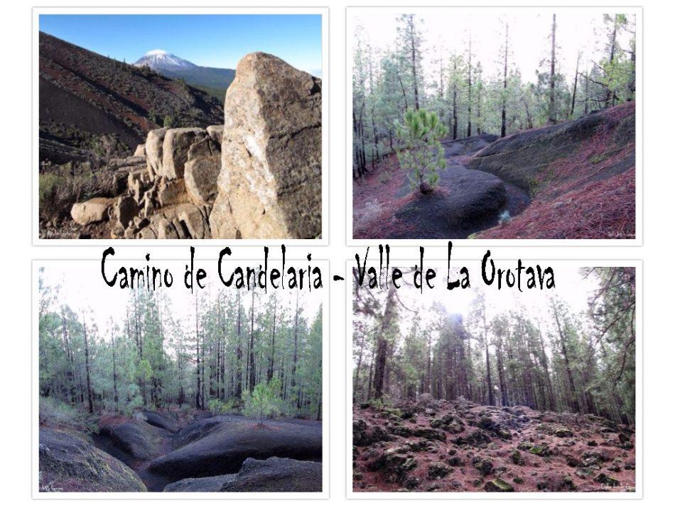 Camino de Candelaria - Tenerife - Valle de La Orotava