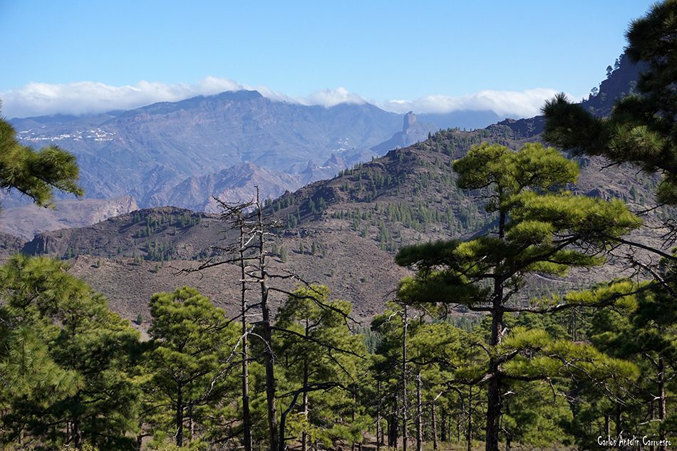 Inagua - Gran Canaria - bentayga