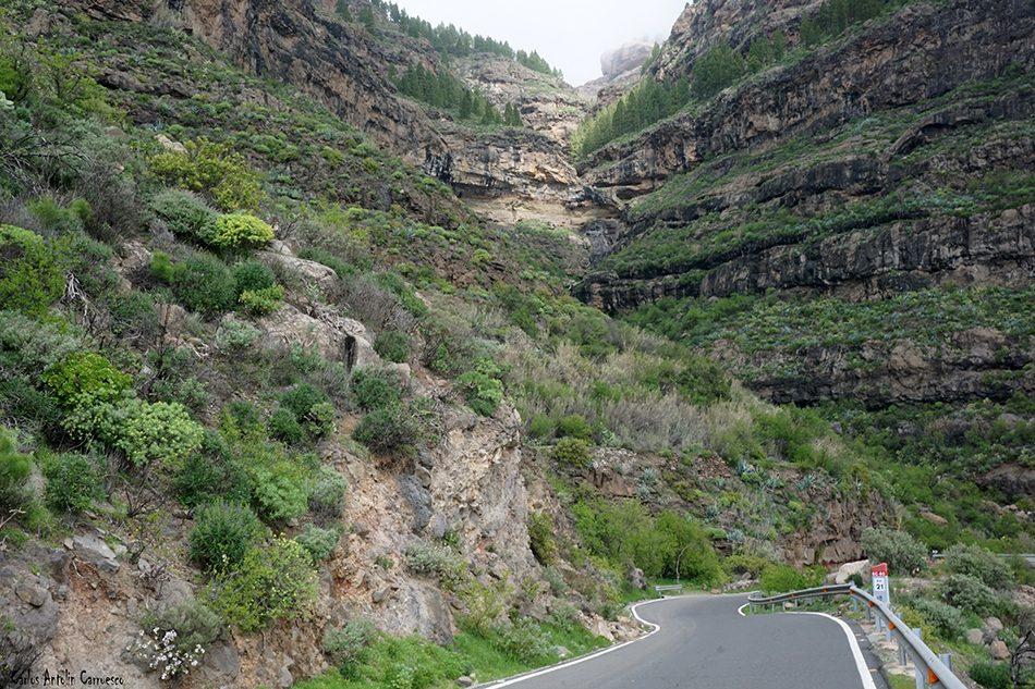 El Negro - Carretera GC60 - Gran Canaria