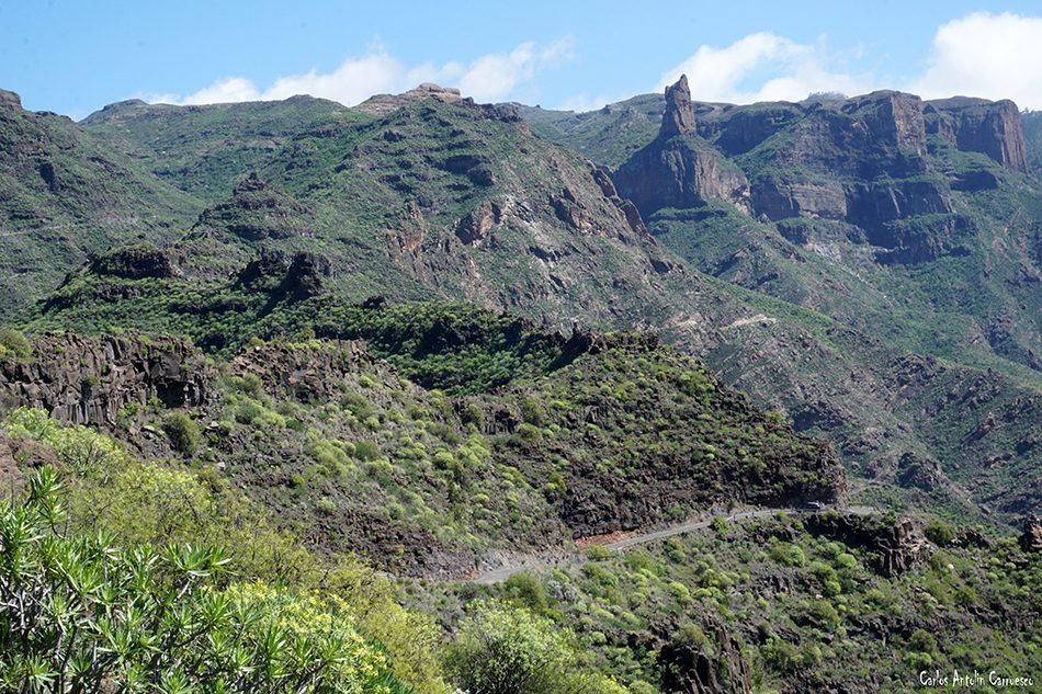 Roque Palmés - Gran Canaria
