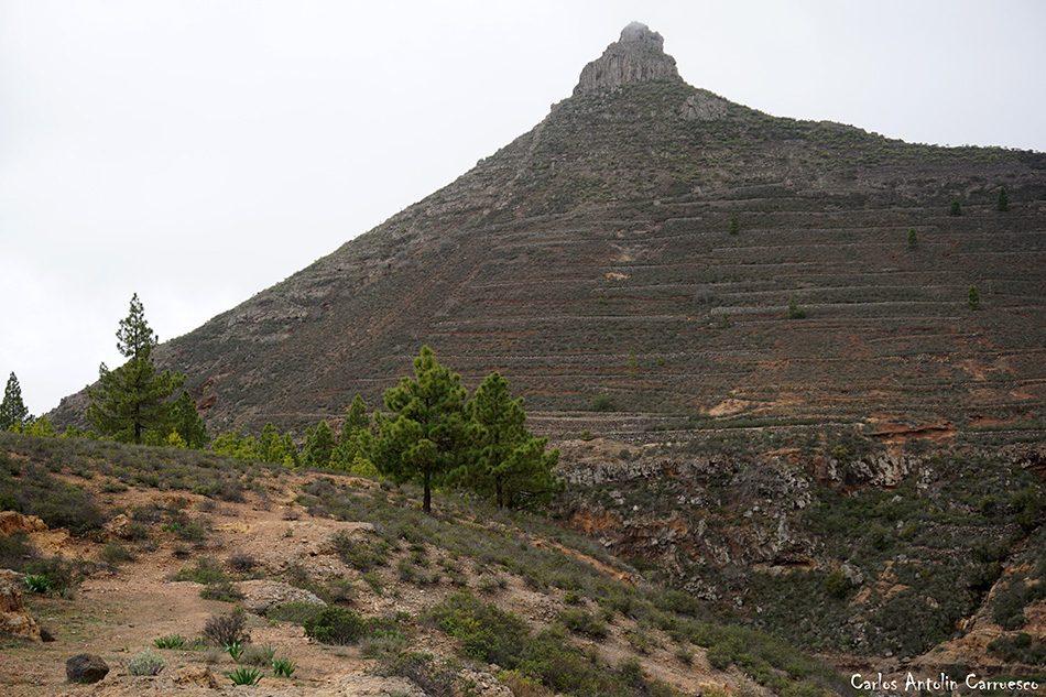 Ifonche - Imoque - Tenerife