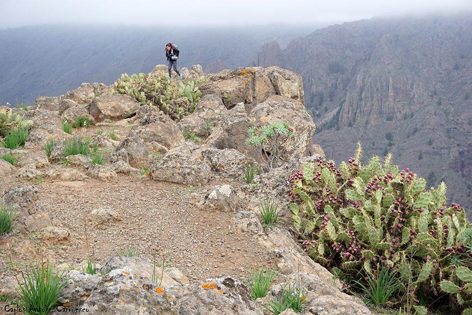 Roque del Conde (1.001 metros de altitud) - Tenerife