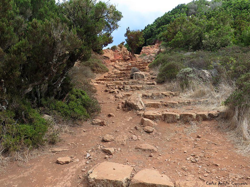 Teno Alto - Cumbres de Baracán - Tenerife