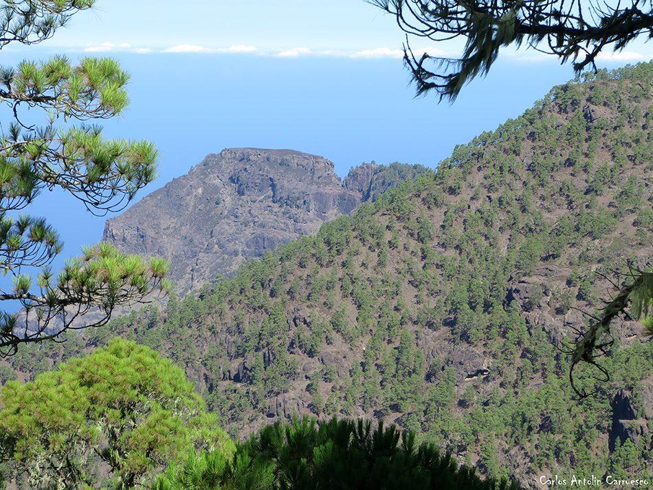 Degollada del Sargento - Tamadaba - Gran Canaria - faneque - altavista