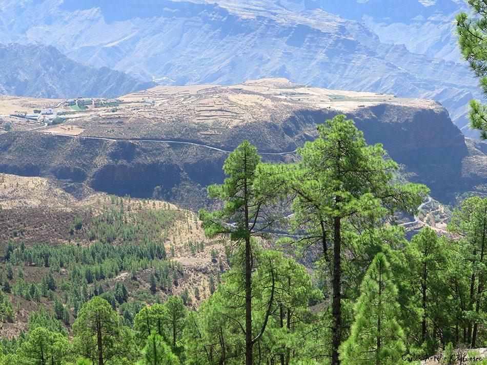 Altavista - Tamadaba - Gran Canaria - mesa de acusa - acusa
