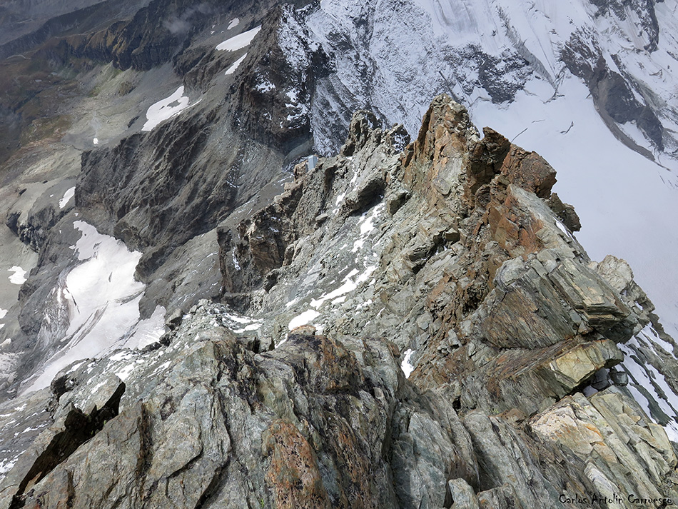 Arista Lion - Cervino - Alpes - carrel